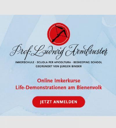 https://www.bienen-janisch.at/data/image/thumpnail/image.php?image=9/bienen_janisch_armbruster_imkerschule_article_3927_2.jpg&width=400