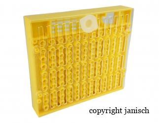 Zucht Kassette, nach Nicot (Copularve) Bild