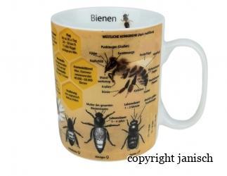 Bienen Wissensbecher Bild