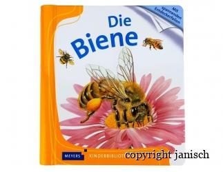 Kinderbuch; Die Biene  Bild
